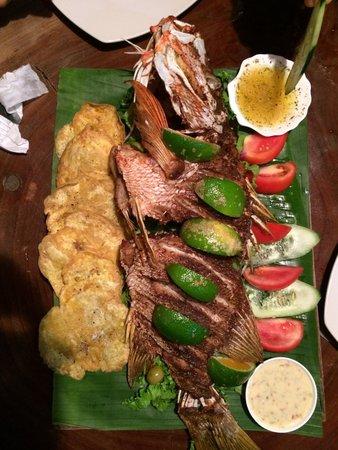 Drakes Kitchen, Casa El Tortugo : Pargo rojo para compartir!!! Buenísimo!!!