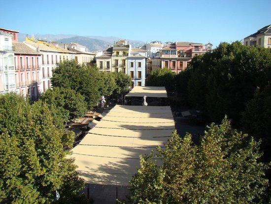 Casa palacio Lopez Daza: Plaza Bib-rambla