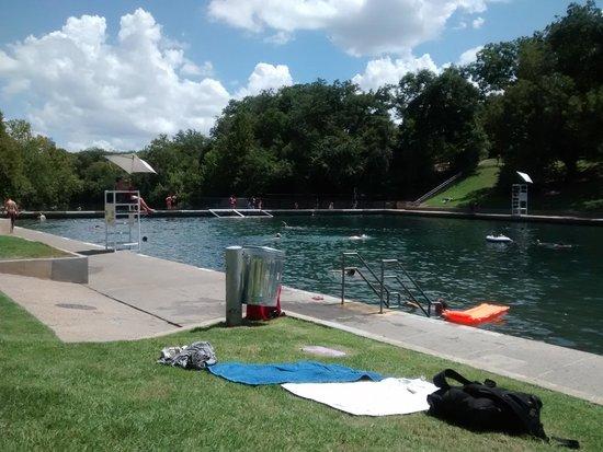 Barton Springs Pool: springs pool