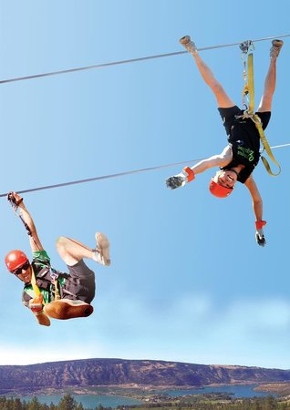 Oyama Zipline Forest Adventure