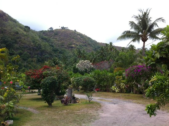 Otaha Lodge : Jardin
