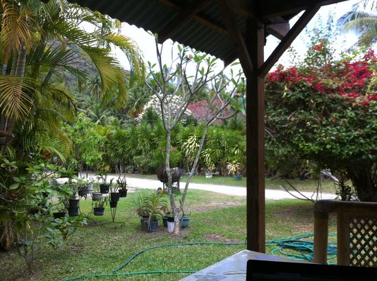 Otaha Lodge : Jardin