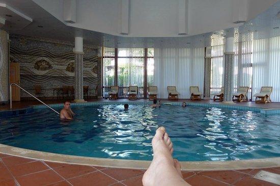 Helena Park Hotel : the indoor pool