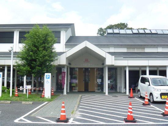 Ageki Onsen Ajisai no Sato