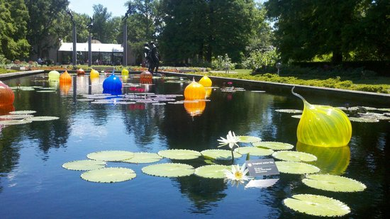 Missouri Botanical Garden: Blown glass adds whimsical art to pool!