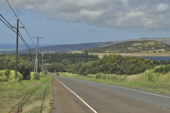 A Touch of Molokai: An upcountry view - Molokai is very rural
