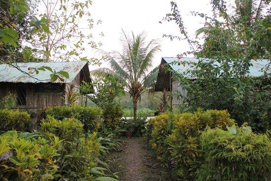 Sabalos Lodge: Cabañas