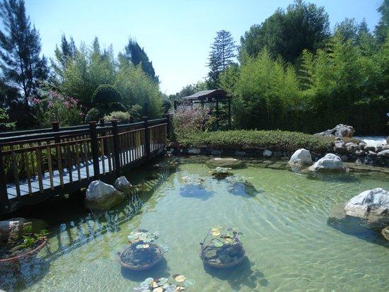 fuentes foto di jardin botanico molino de inca