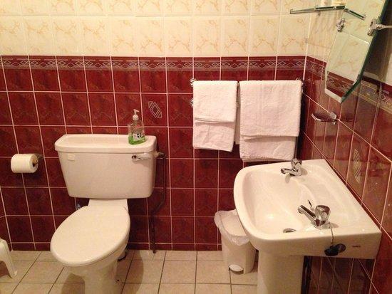 Cappabhaile House: Salle de bain, avec lavabo, toilettes, baignoire, petits flacons de gel douche et shampoing.