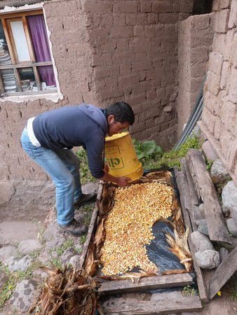 Alternative Inca Trails - Day Tours: Preparing the corn for the chicha