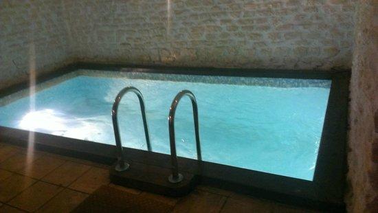 The Old Mill Hotel : Небольшой бассейн в сауне