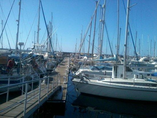Paradise Costa Taurito: Port jachtowy w Mogan