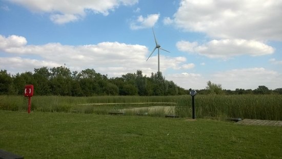The Forest of Marston Vale - Forest Centre: View from the picnic area