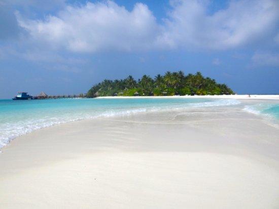 Dhaalu Atoll: l'ile