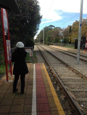 Glenelg Tram : Waiting for the tram