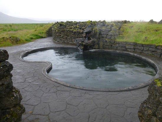 Hotel Leirubakki: viking pool - fairly warm slimy bottom