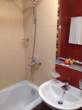 Hotel Favorit: Bath room