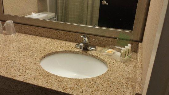 Holiday Inn Rosslyn @ Key Bridge: Bathroom