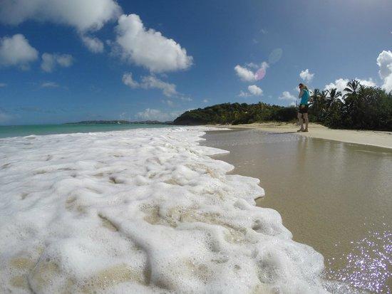 Coconut Beach Club: View up the beach