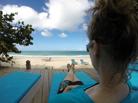 Coconut Beach Club: View from the deck chairs