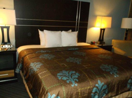 BEST WESTERN Newport Inn: King bed
