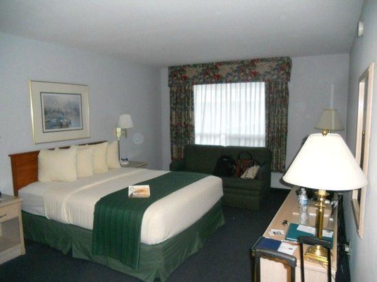Quality Inn - Ocean Shores: Spacious comfy room at Quality Inn Ocean Shores