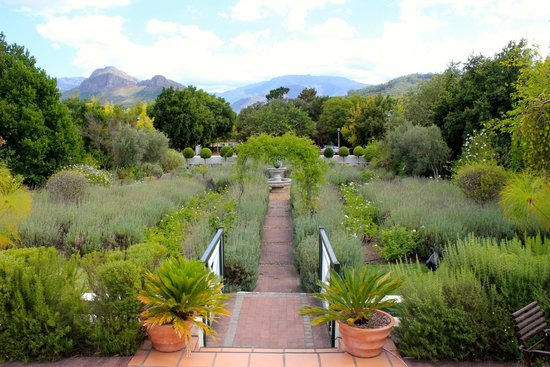 Residence Klein Oliphants Hoek: View of the garden from the porch.