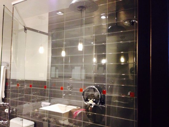 Le Place d'Armes Hotel & Suites: Shower has rain head and massager, good water pressure.