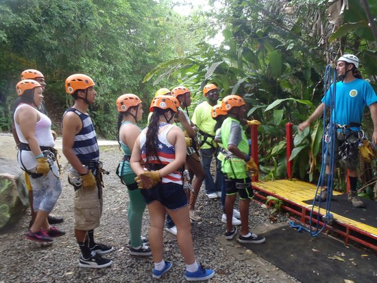 Rain Forest Zipline Corp.: Getting Instructions