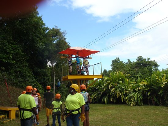 Rain Forest Zipline Corp.: A lot of brave people
