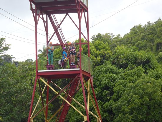 Rain Forest Zipline Corp.: Two at a time