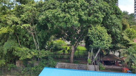 La Cresta Inn : backyard view