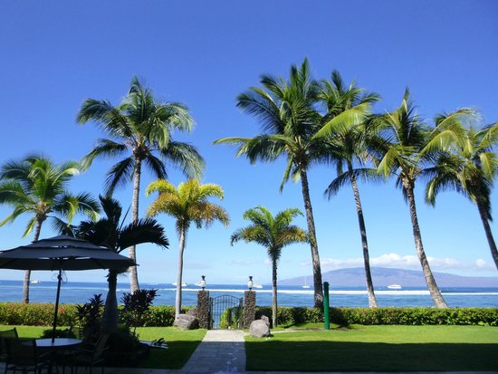 Lahaina Shores Beach Resort: View from just outside of lobby