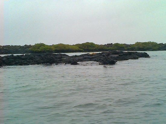 La Playita: Entrada a la isla Isabela