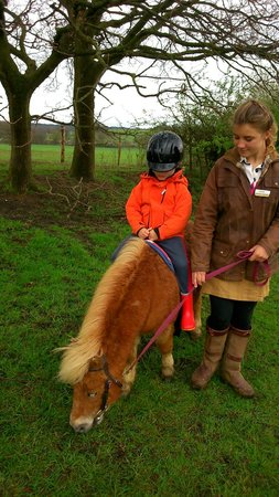 Кобэм, UK: Riding at the Shetland Pony Club/Cobham