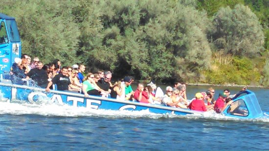 Hellgate Jetboat Excursions: Some can get wet!