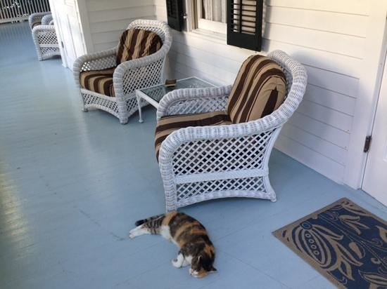 The Gardens Hotel: verandah and our morning visitor