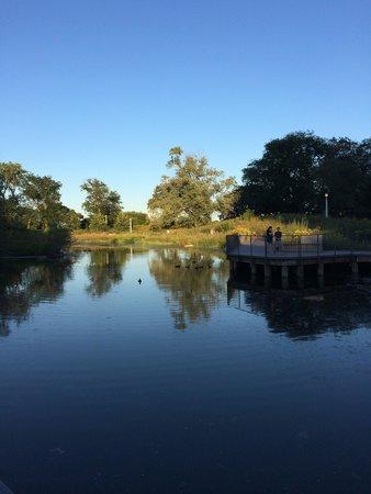 林肯公园南池塘