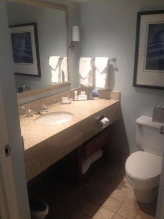Hilton Long Island/Huntington: Small bathroom