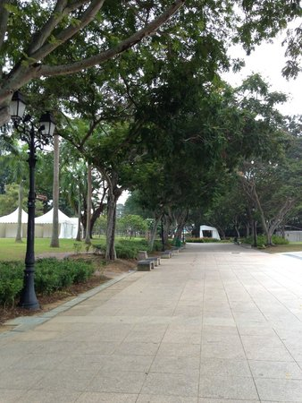 Esplanade Park : さわやかな感じの公園内の道