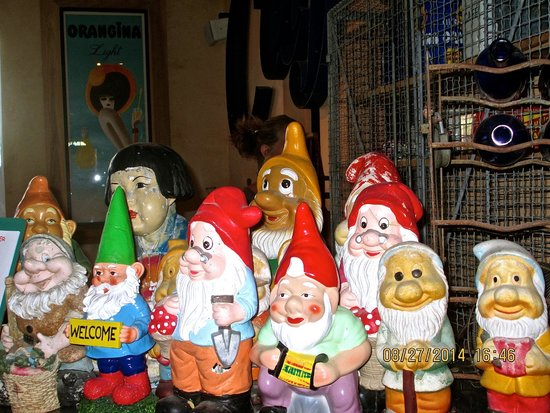 snow white and the 7 dwarfs ok well a few of them are gnomes