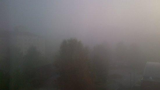 Hyatt Place Atlanta Airport - South: Really foggy on a beautiful Sunday morning