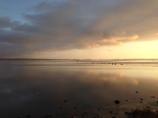 Arcata Marsh and Wildlife Sanctuary: Looking south from Arcata Marsh at sunset.