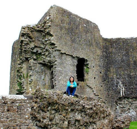 Roscommon Castle: Just sitting on a castle...