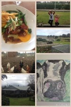 St Isidore: lunch and surrounds