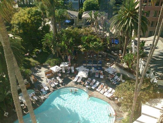 Fairmont Miramar Hotel & Bungalows : プール