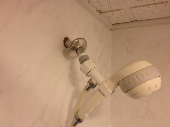 Ramada Lewiston Hotel & Conference Center: Shower head