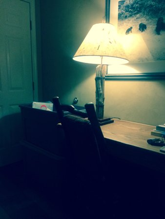 Oak Tree Lodge: Useless desk