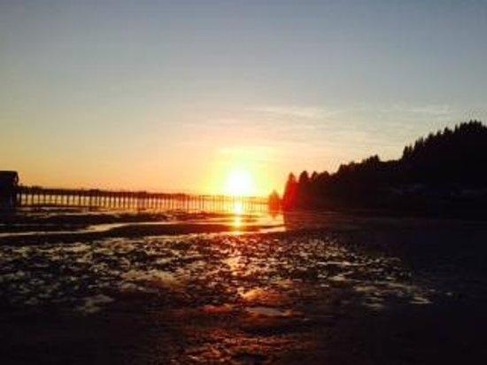 Harborview Inn & RV Park : Where I walked at sunset