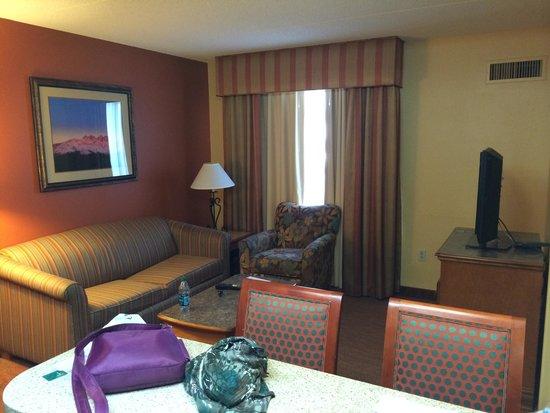 Homewood Suites by Hilton Phoenix-Metro Center: Living room